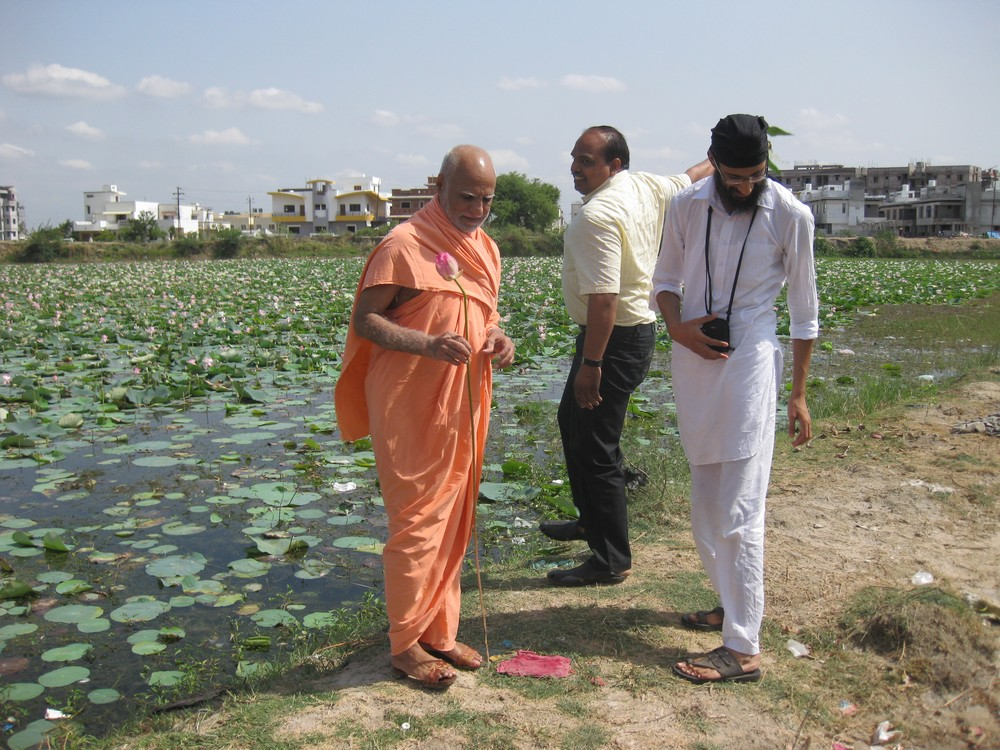 9th June. Enroute to Vadodra from Dahod. Maharaj Ji with a lotus. In the backdrop a pond blooming with lotuses