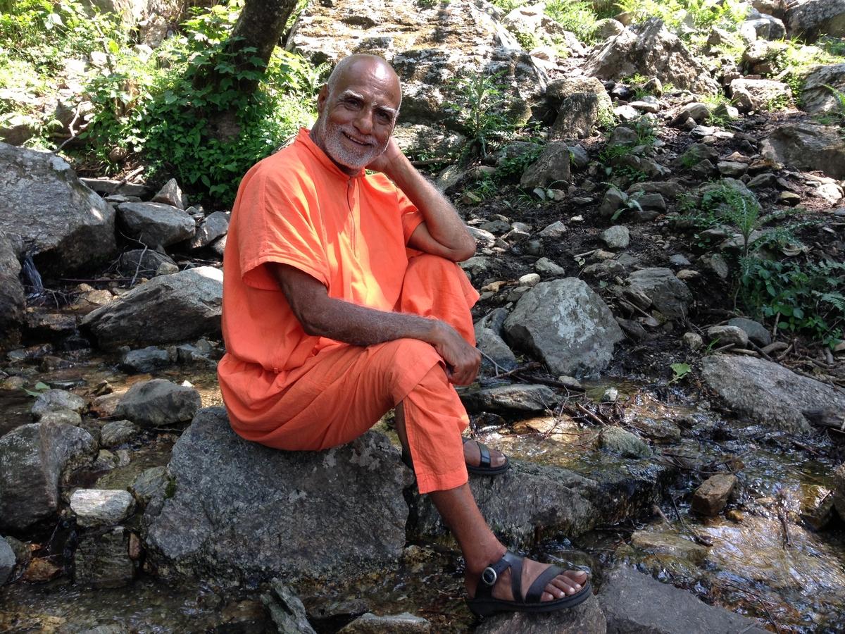 mahayogi-swami-buddh-puri-ji-maharaj-in-himalaya-2