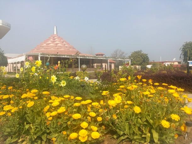 The Ashram in Spring